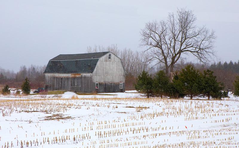 barns, snow-7170.jpg