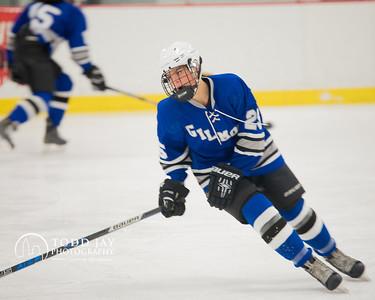 Hockey Gilmour Academy Girls Prep vs Wyoming Seminary