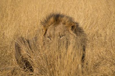 Gobabis, Namibia