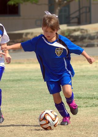 Soccer 2014 Vol 3