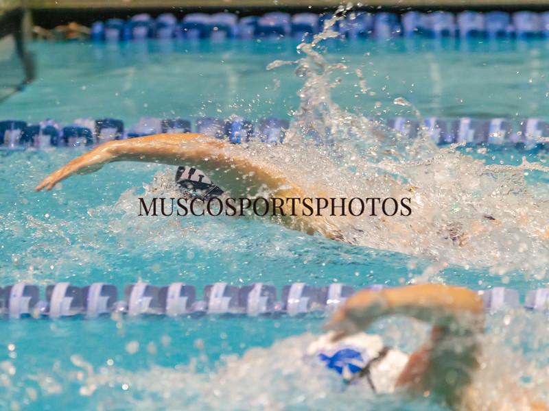 Swimming-diving vs Seton Hall_219.jpg