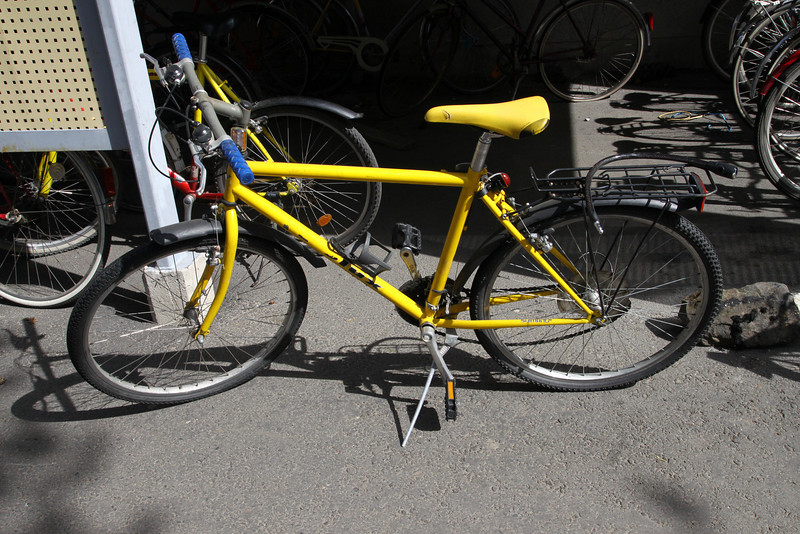My damn bicycle which broke on Day 1 of purchase. Notice the loose chain, rear tension-er is broken.