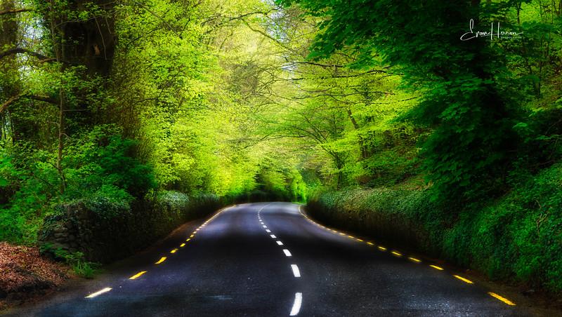 Ireland road -1.jpg