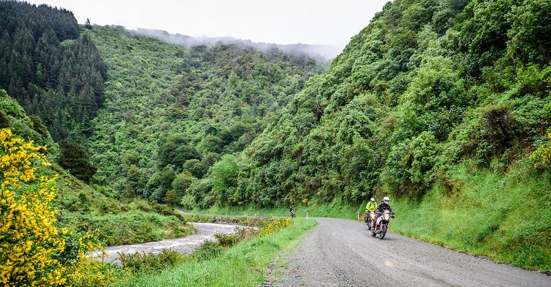 2019 KTM New Zealand Adventure Rallye (80).jpg