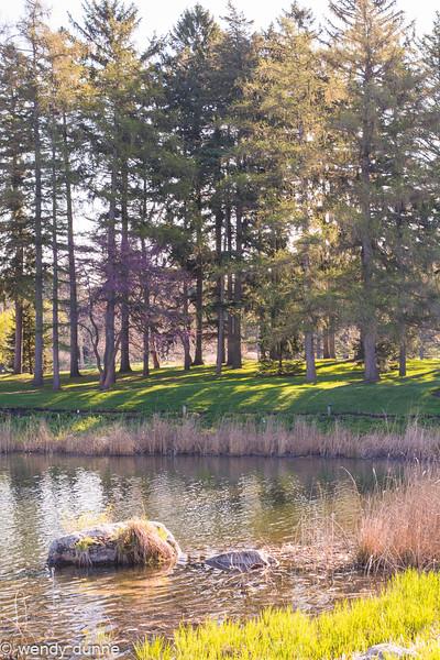 Morton Arboretum April 2015 with Lalita