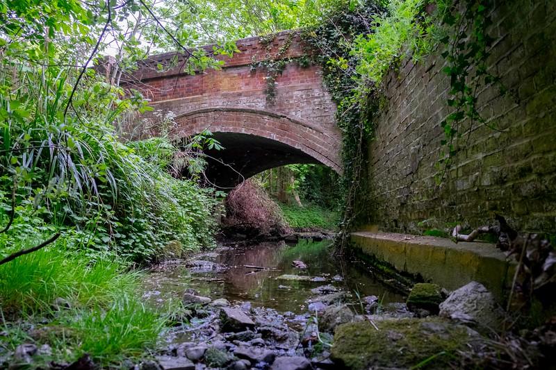 River Rib