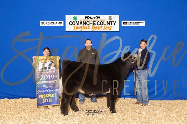 2019 Comanche County