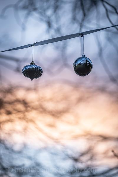 Winter Wonderland daytime-67.jpg