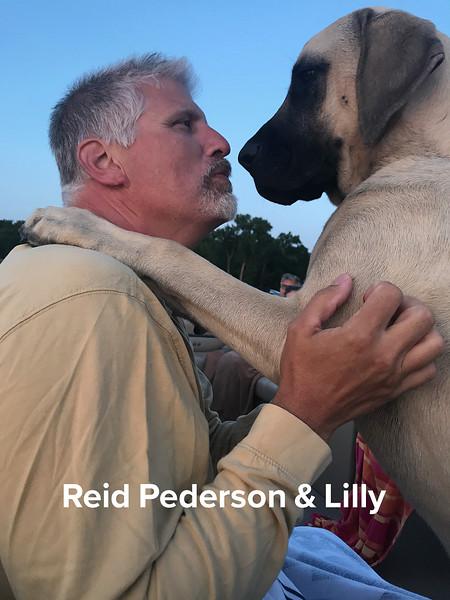 Reid Pederson - Lilly.jpg