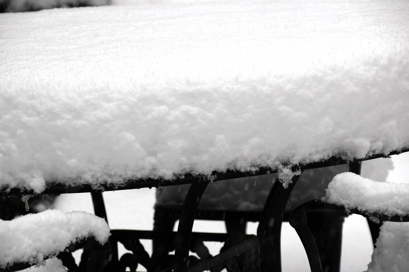 snow_o1_2018_202.jpg