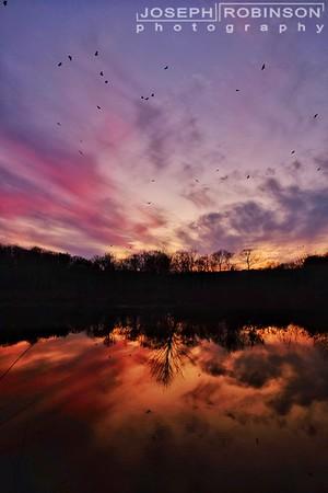 Sunrise / Sunsets