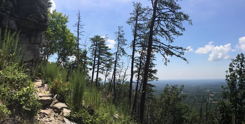 Ledge Spring Trail