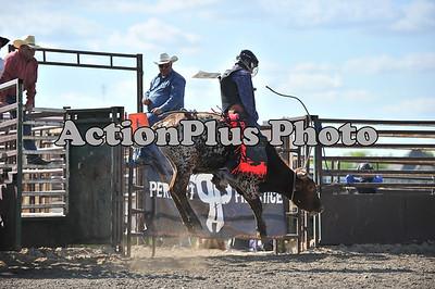 Jr Bull Riding