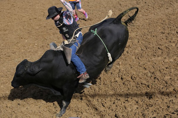 Lawrence Rodeo 2017