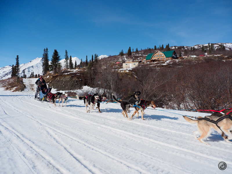 20190326_alaska_trip_alpine_creek_lodge_2628.jpg