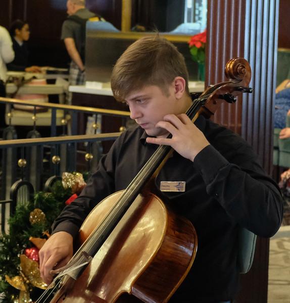 The Primavera String Quartet
