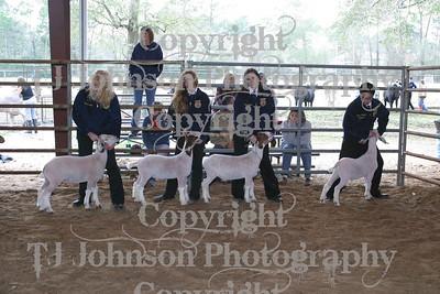 2008 KISD Goat Show