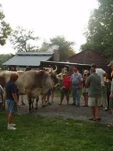 Ox Kill Summer Party 2005