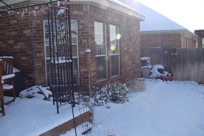 March 2008 Snow