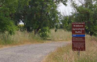 Wildhorse Agric Buffer