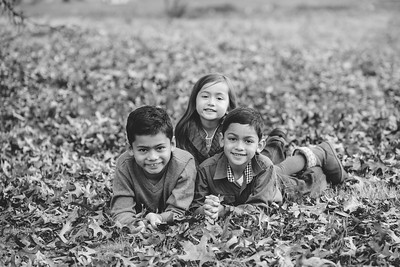Liana Family Fall 2015
