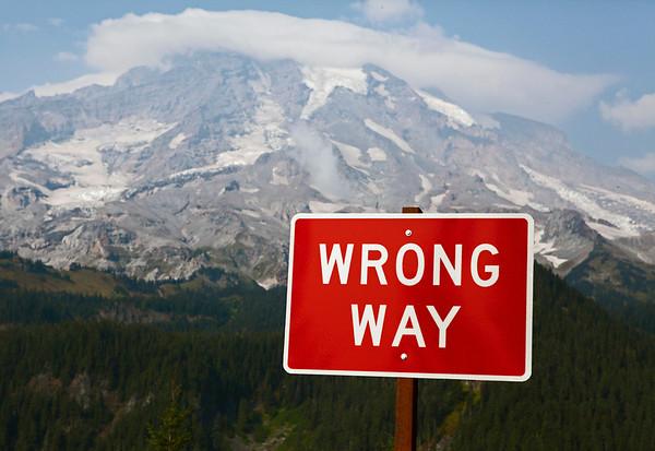 Mt Rainier NP WA
