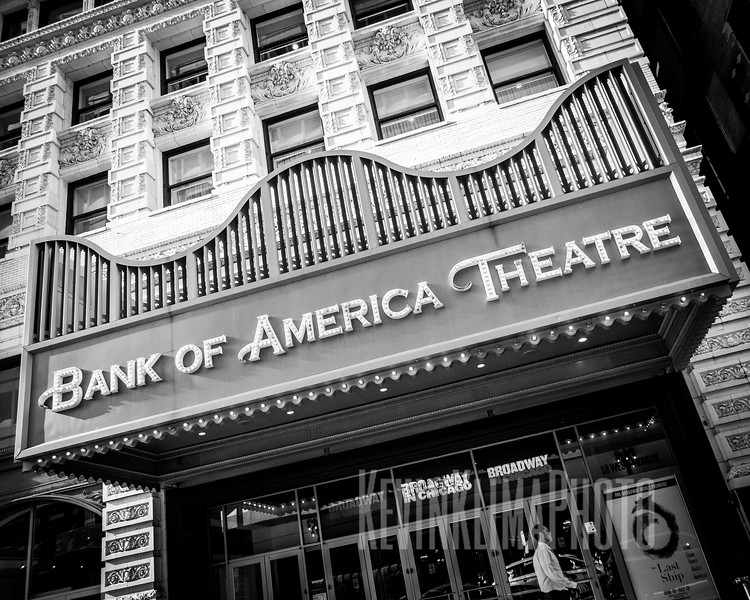 Bank of America Theatre  (renamed)