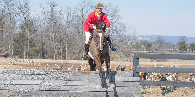 Piedmont Fox Hounds-Welbourn   3-1-2014