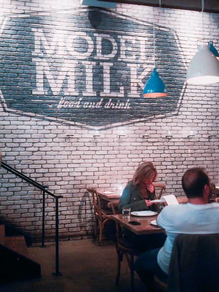 model milk sign.jpg