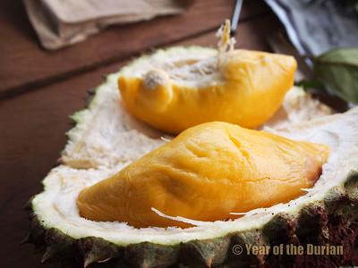 Cambodian Durians