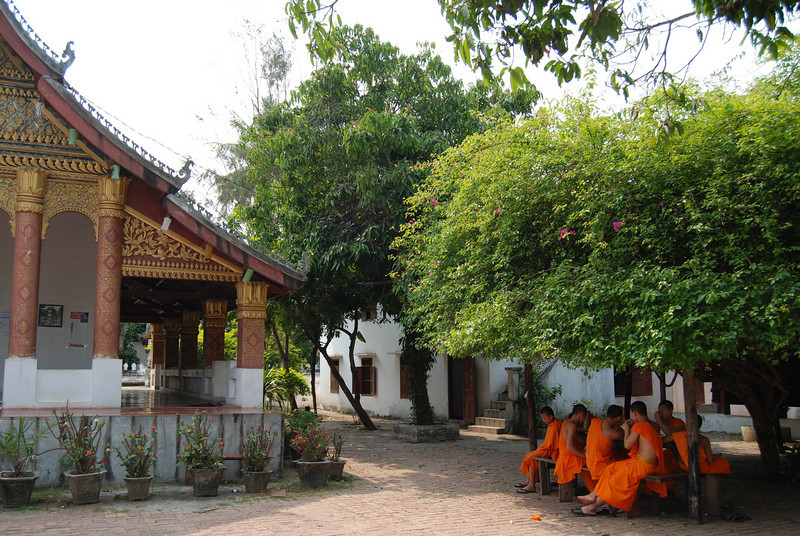 monks near a wat