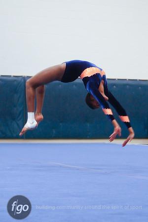 12-10-14 Gymnastics Meet - Minneapolis Washburn v St. Paul Como Park and Minneapolis Southwest v St. Paul Johnson