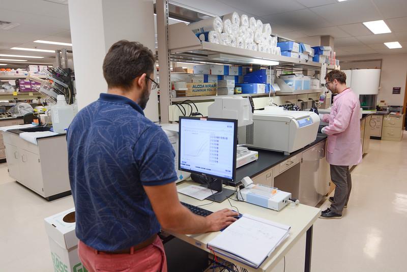 CHIRP 2019 labs055.JPG