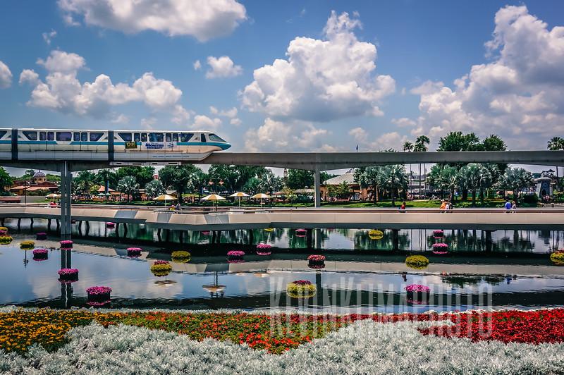 Disney17.jpg