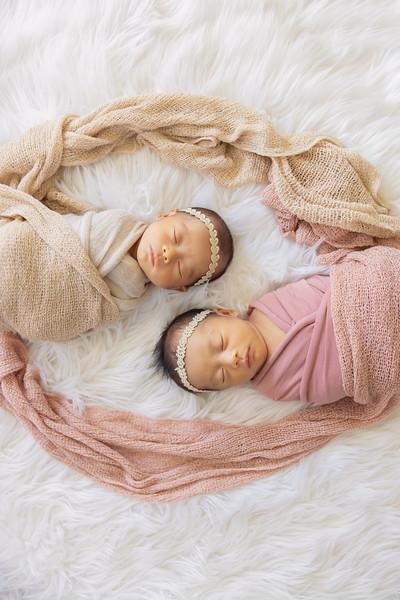 baby-evelyn+jocelyn-1539.jpg