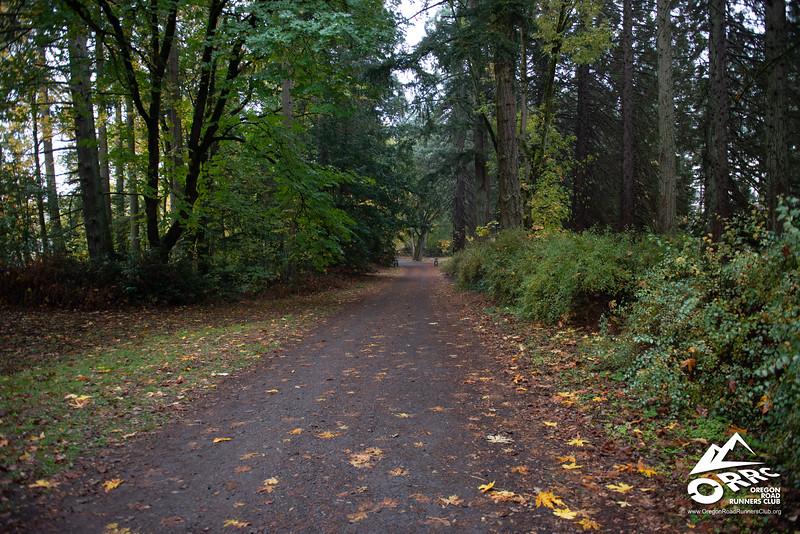 2018-10-27 ORRC Autumn Leaves 50/50