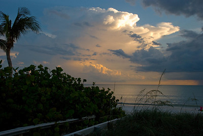 Condo, Bonita Springs Florida