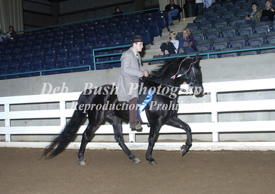 CLASS 37  TRAIL PLEASURE JUVENILE 17 & UNDER SPECIALTY