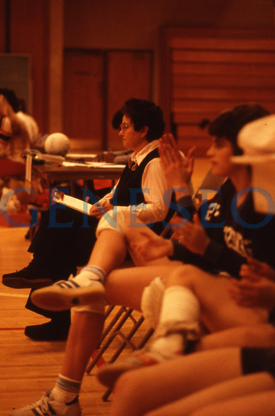 Women's Volleyball Across the 1980s
