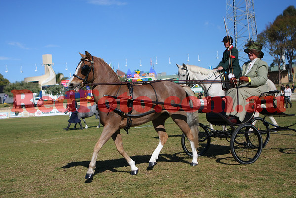 2009 10 02 Perth Royal Show Carriage AM