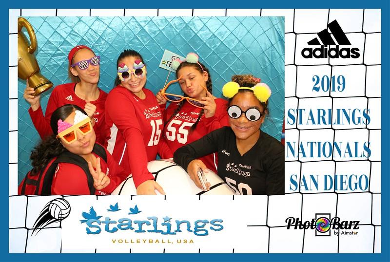 Starlings Volleyball (51).jpg