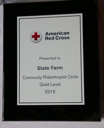 American Red Cross June 2015
