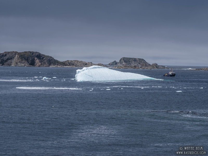 Iceberg 68 b     Photography by Wayne Heim