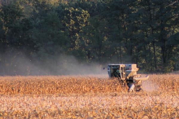 Harvest Time (2007)
