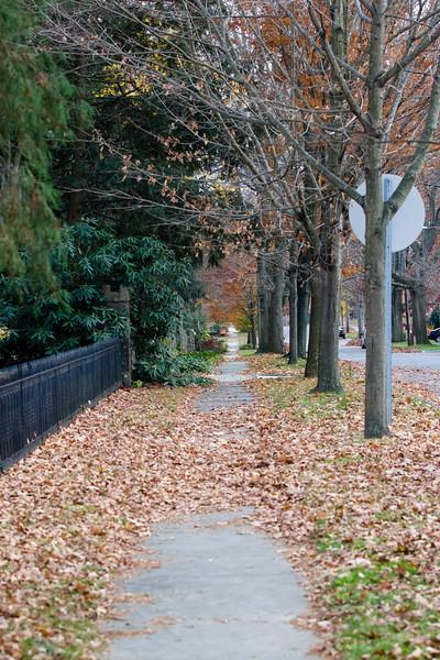 S. Clinton Avenue