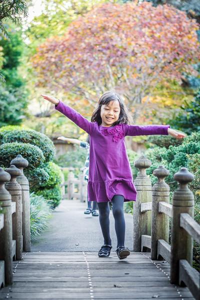 The-Sinha-Family-Japanese-Garden-25.jpg