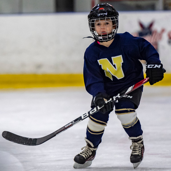 2019-02-03-Ryan-Naughton-Hockey-3.jpg