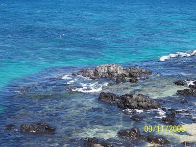 Hawaii 2005 (Maui)