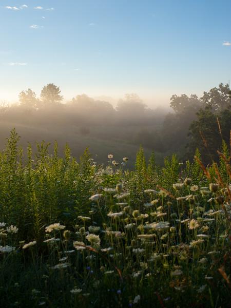 Cabin Sunrise and Fog
