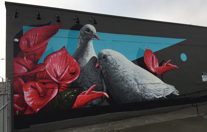 Doves-on-Chown-Hardward-by-David-Rice-1024x652.jpg